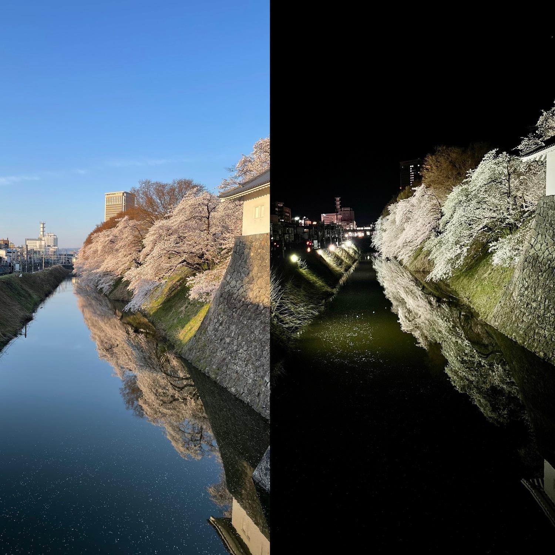 霞城公園 朝と夜