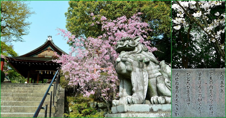信長を主宰神と祀る建勲神社