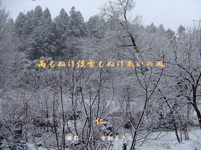 フォト575あそび『 雨もぬけ淡雪もぬけあいの風 』vyx2601