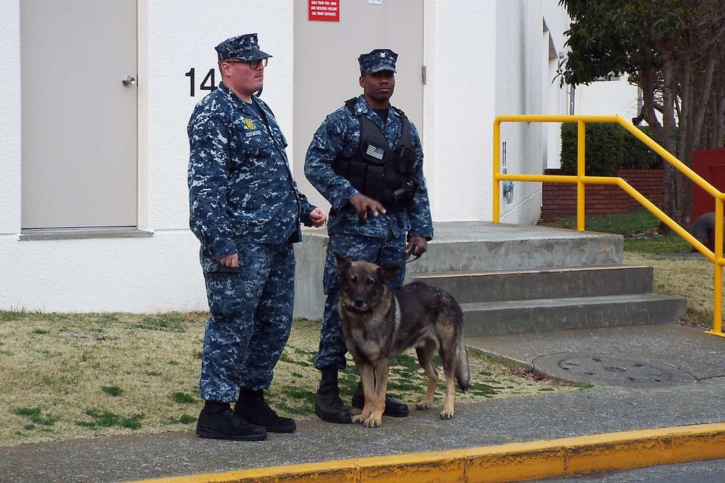 アメリカ海軍の警備犬